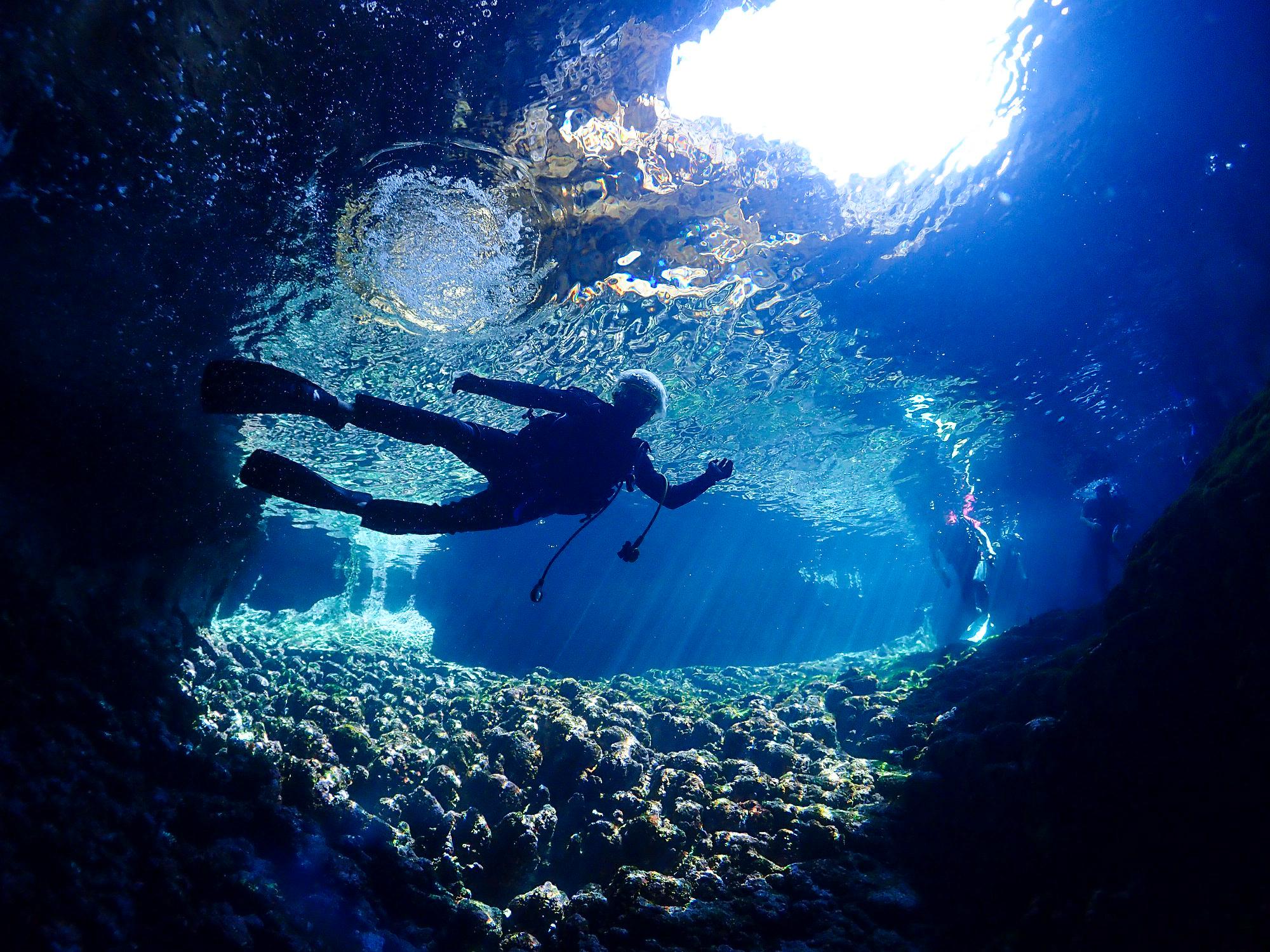 宮古島の体験ダイビングで見られる水中風景