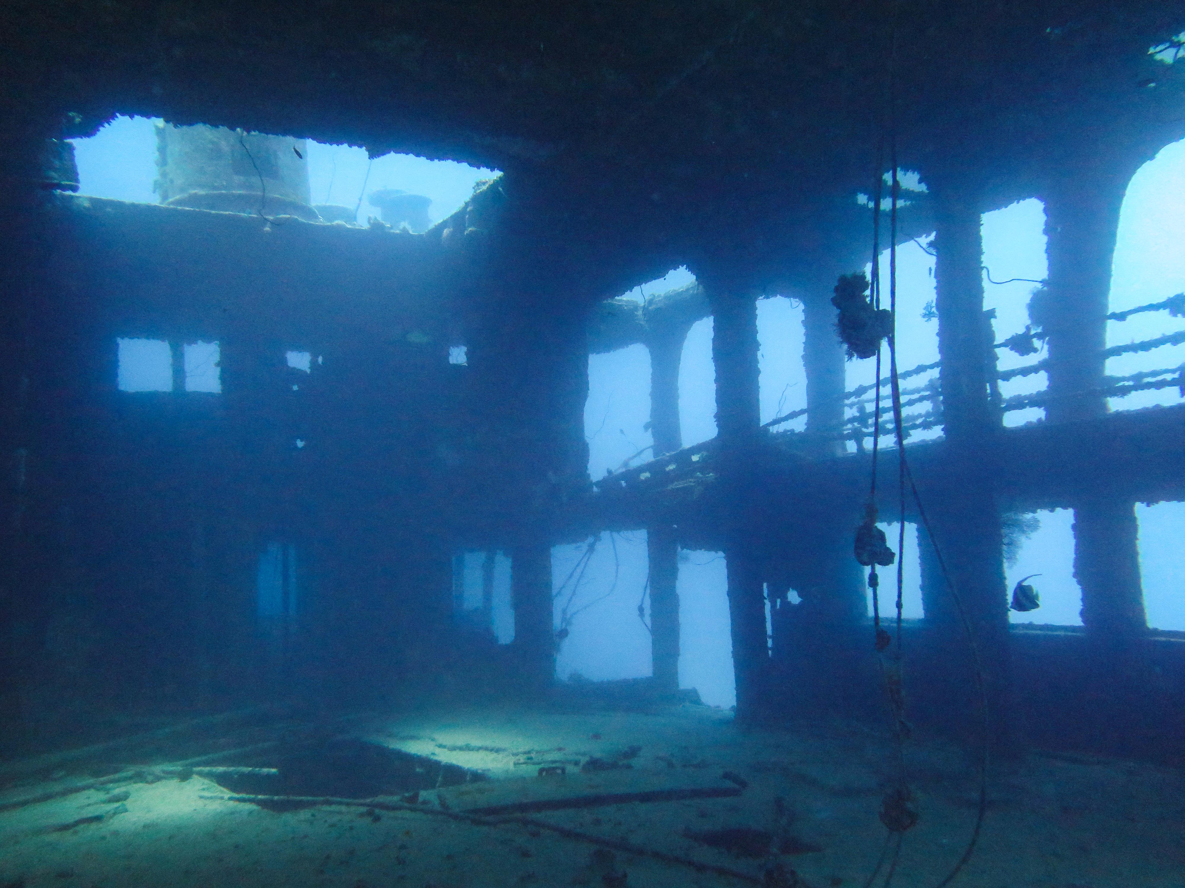 沈没船を見られるファンダイビング