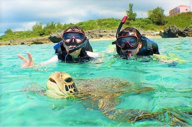 ウミガメとシュノーケリング