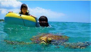 宮古島でウミガメとシュノーケリング