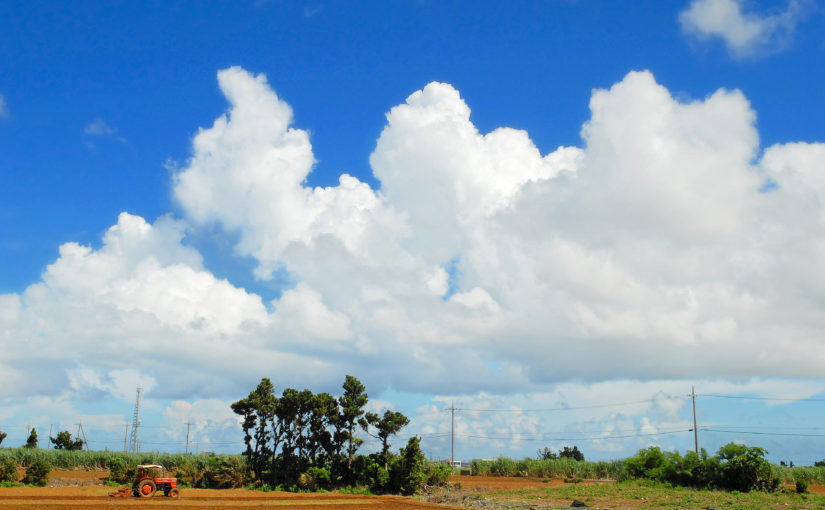 宮古島の9月のイメージ