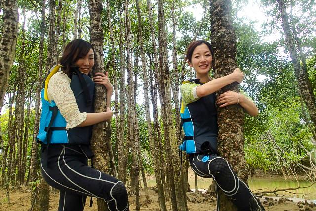 亜熱帯原生林